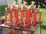 Tournament trophies displayed at the rules meeting/dinner the night before the tournament.