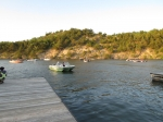Some of the boats waiting their turn to be released to fish.